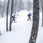 Schneeschuhwandern Gosau
